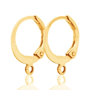 DQ oorringen 12mm Gold plated, per paar