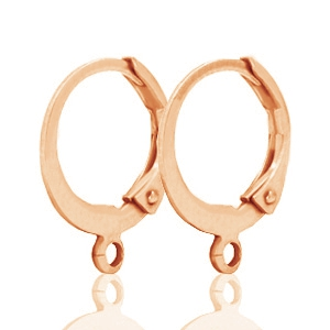 DQ oorringen 12mm Rose gold plated, per paar