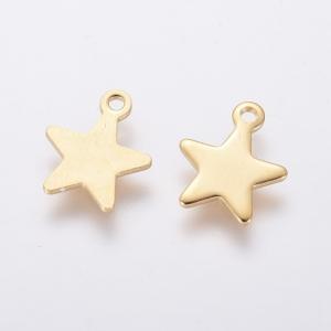 RVS bedel ster goud, per stuk