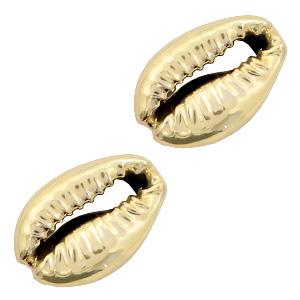 Kauri schelp open Gold, 2 stuks