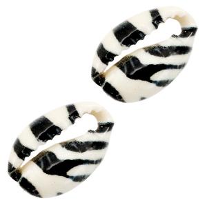 Kauri black white tiger, per stuk