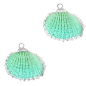 Schelp kokkel silver spring turquoise green, per stuk