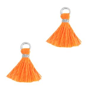Kwastje 1cm silver neon orange
