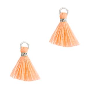 Kwastje 1cm silver bright peach